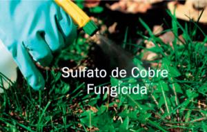 sulfato de cobre como fungicida